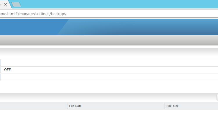 Backup NSX 2