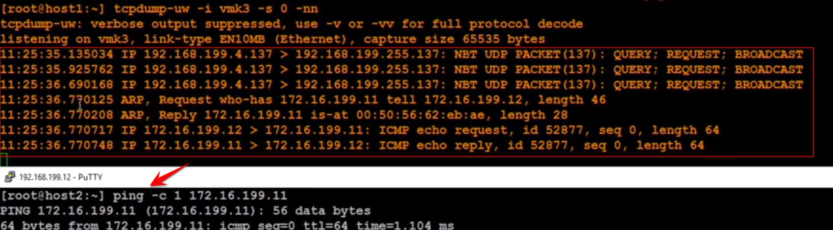 مشاهده ترافیک در کارت شبکه های مجازی VMware ESXi از طریق ابزار tcpdump