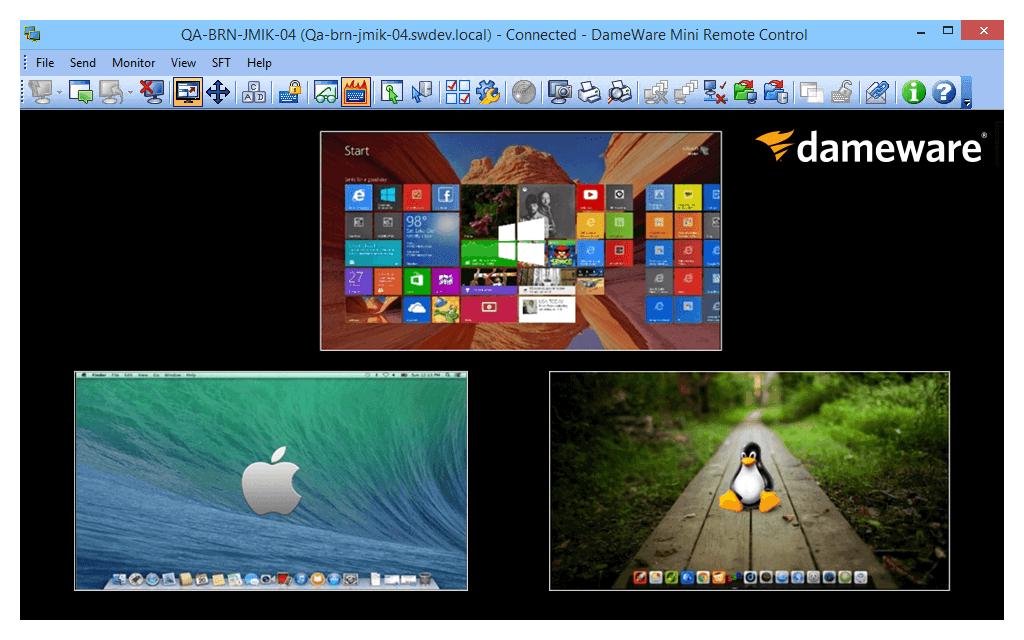تصویر از دانلود نرم افزار Dameware Remote Support 12.1.0.34